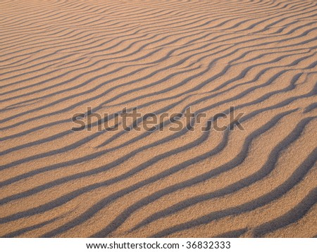 Pattern on the sand formed by wind  (Slowinski National Park in Poland). - stock photo