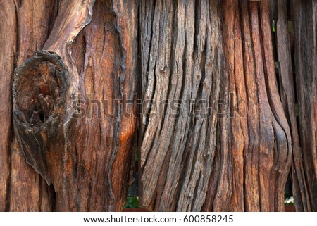 Pattern,texture,surface and background of wood