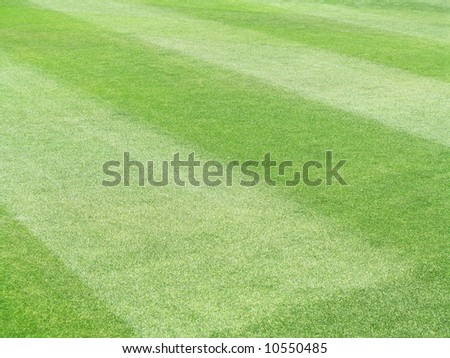 Patterned field of green grass sports field - stock photo