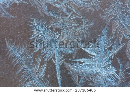 patterns of frost on the winter glass