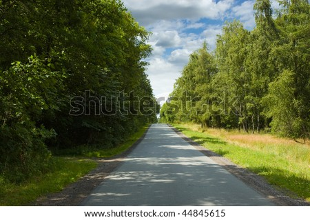 Paved road running in a straight line through a green lush forrest i Denmark - stock photo