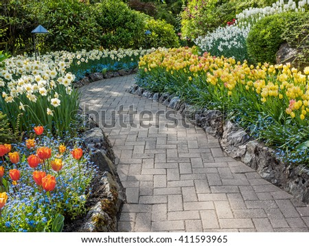 Paved walkway in the spring garden among blooming tulips and daffodils - stock photo