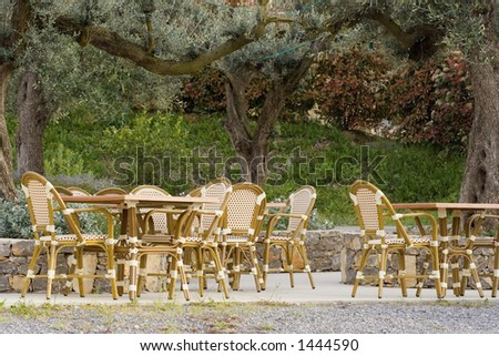 pavement cafe under an old olive tree - tables and cane chairs - stock photo