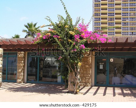 pavilion at levee in Netanya