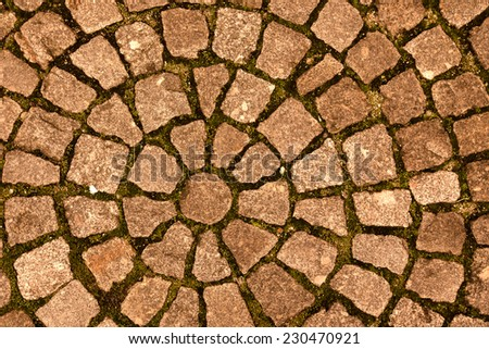 paving stone laid out circles. background