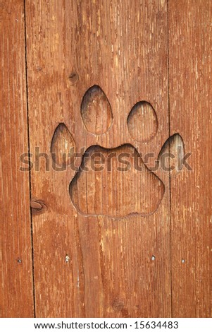Paw Print - stock photo