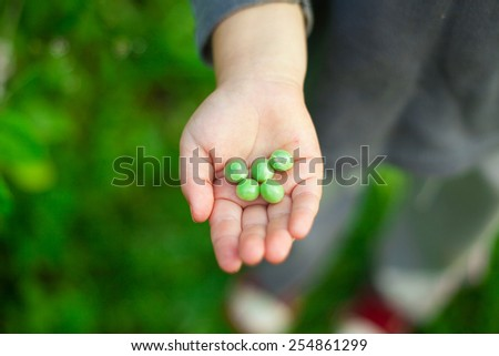 pea child hand kid green organic five pieces - stock photo