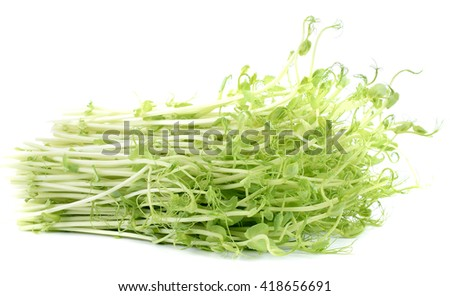 pea sprouts on white background - stock photo