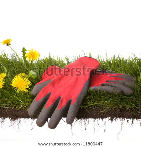 peace of grass with garden-gloves isolated on white background - stock photo