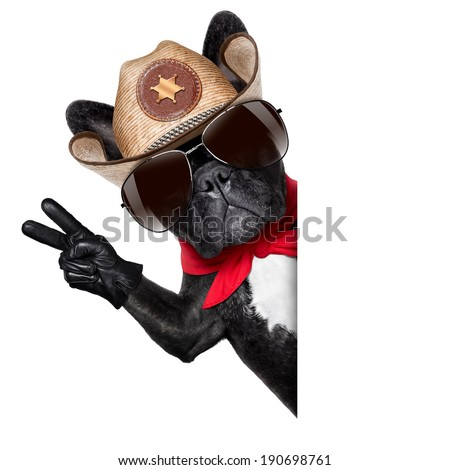 peace or victory fingers cowboy dog beside white blank banner oder placard - stock photo