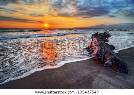 Peaceful and relaxing beach vacation destination sunrise with an intriguing piece of driftwood - stock photo