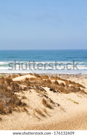 Peaceful coastline in California - stock photo