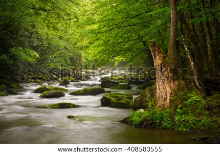 Peaceful Great Smoky Mountains National Park foggy Tremont River relaxing nature landscape scenic near Gatlinburg TN - stock photo