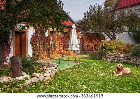 Peaceful idyllic rural variegated autumn garden with lying dog - stock photo