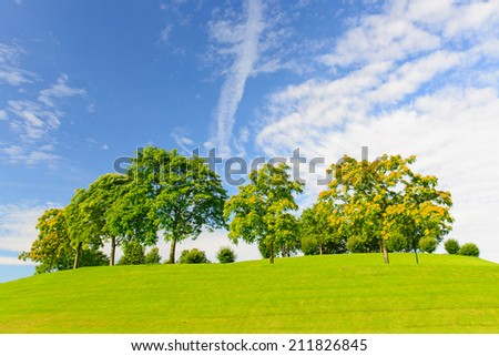 Peaceful image of vibrant green grass and trees against a blue sky with clouds and room for copy space.  the location is the Rheinhaue in Bonn, Germany - A recreational park covering 40 acres - stock photo