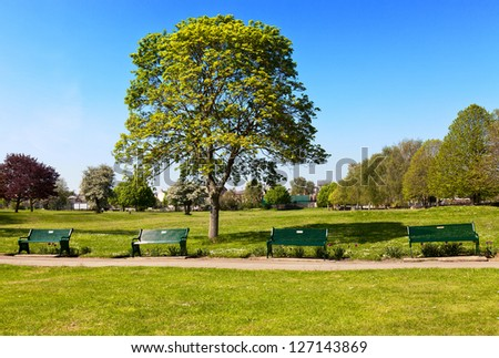 Peaceful park - stock photo