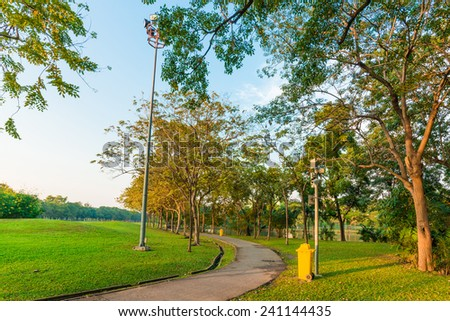 Peaceful park in the city with sun light, summer park road