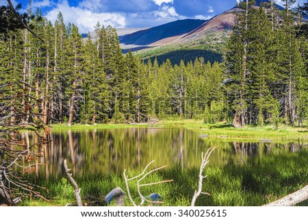 Peaceful Scenery of the World Famous Yosemite National Park in California, United States Of America. Horizontal Shot. HDR Image - stock photo