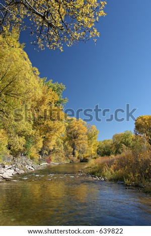 peaceful stream lined with the colors of autumn