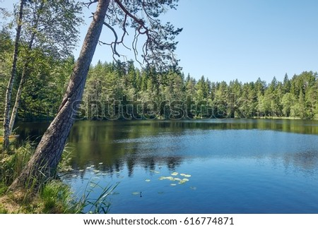 Peaceful summer  lakeside scenery with clear blue sky.