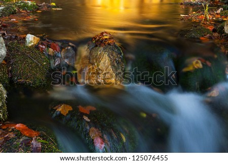 Peacefully flowing stream, waterfalls and autumn foliage in the forest in the mountains on a sunny day