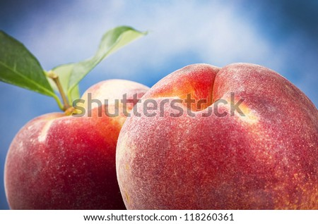 peach close up on the sky background - stock photo
