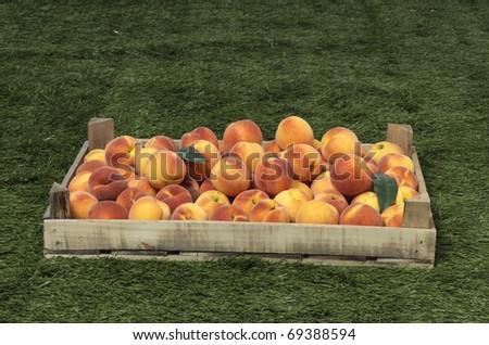 peach in the box - stock photo