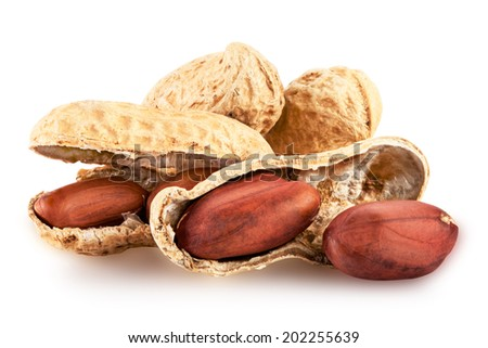 Peanut isolated on white background closeup. Clipping Path - stock photo
