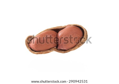 peanut isolated shots in studio on a white background - stock photo