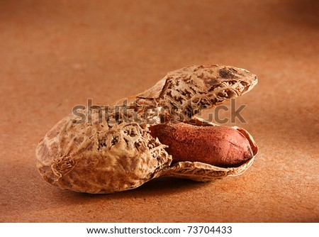 Peanut nut fruit group with shadow on brown background