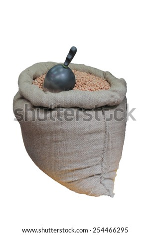 peanuts in a burlap sack isolated on white background - stock photo