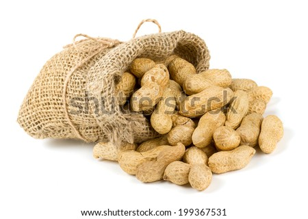 peanuts in a miniature burlap bag isolated on white - stock photo