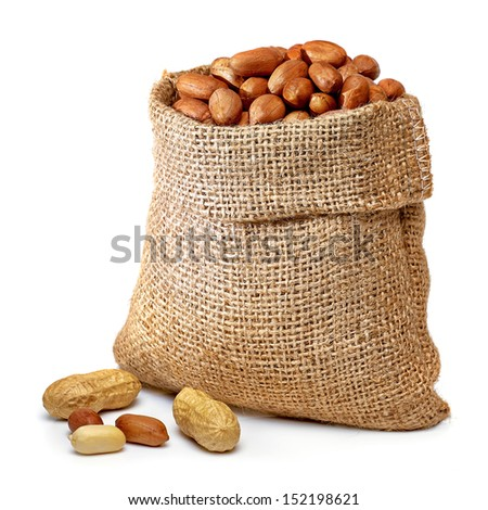 Peanuts in burlap bag on white background - stock photo
