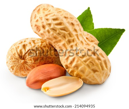 peanuts in closeup - stock photo