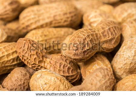 Peanuts In Shell Pile Closeup - stock photo