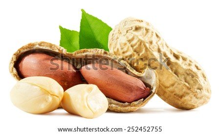 peanuts isolated on the white background - stock photo