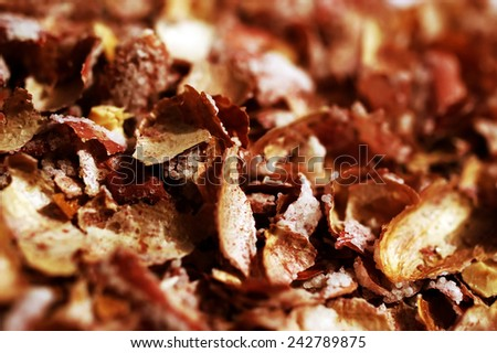 Peanuts shells - abstract background