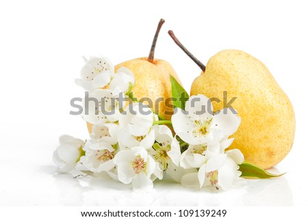 Pear and flower - stock photo