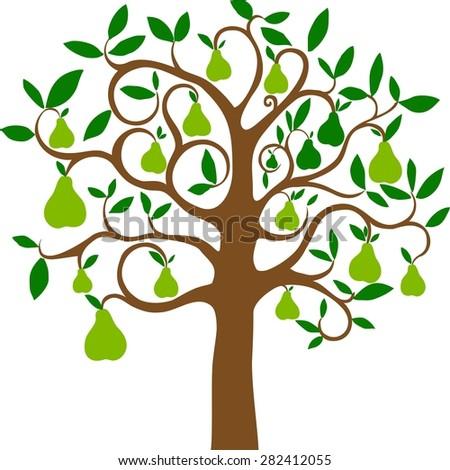 Pear tree isolated on White background. illustration - stock photo