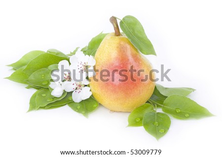 Pear with flower and leaves