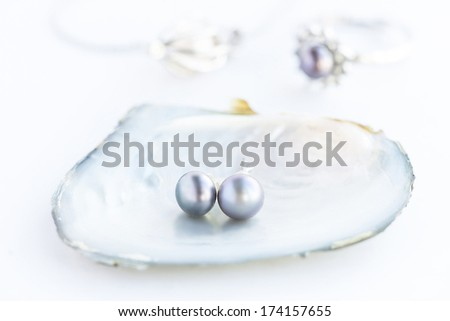 pearl in the shell - stock photo