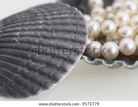 pearl necklace sea shell elegant fashion jewelry