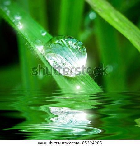 Pearl of dew on the leaf with reflection - stock photo