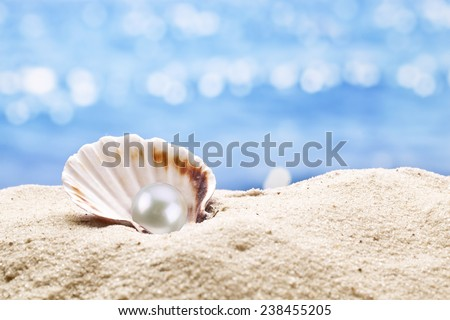 Pearl oyster in the sand. Blurred sea at the background. - stock photo