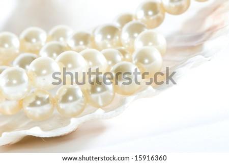 Pearls in seashell - stock photo