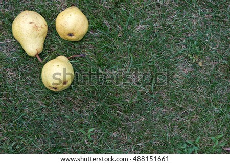 Pears on the green grass from the top