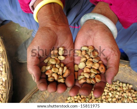Peasant working in China, beans in her hands - stock photo