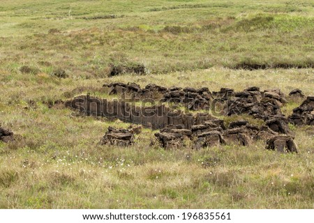 Peat cutting area, showing cut peats drying on moorland - stock photo