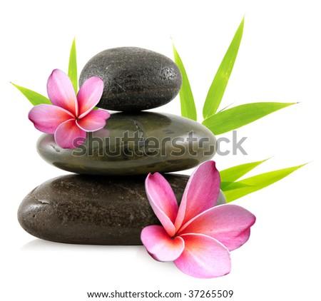 Pebbles and frangipani flowers - stock photo