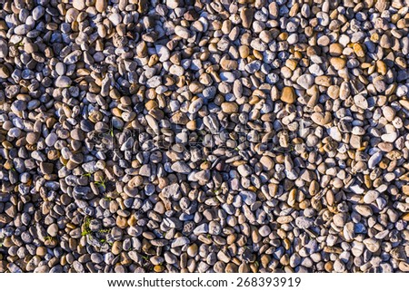 pebbles background - river sediment - stock photo